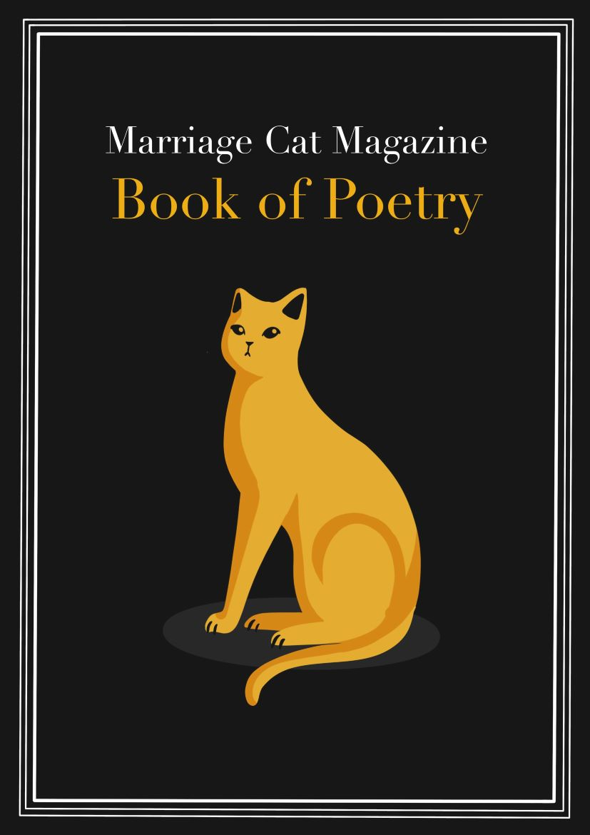 Bookcover illustration of a gold cat on a black background. Livre Doux Publishing: crowdfunded literature